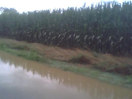 Flooding #3.jpg
