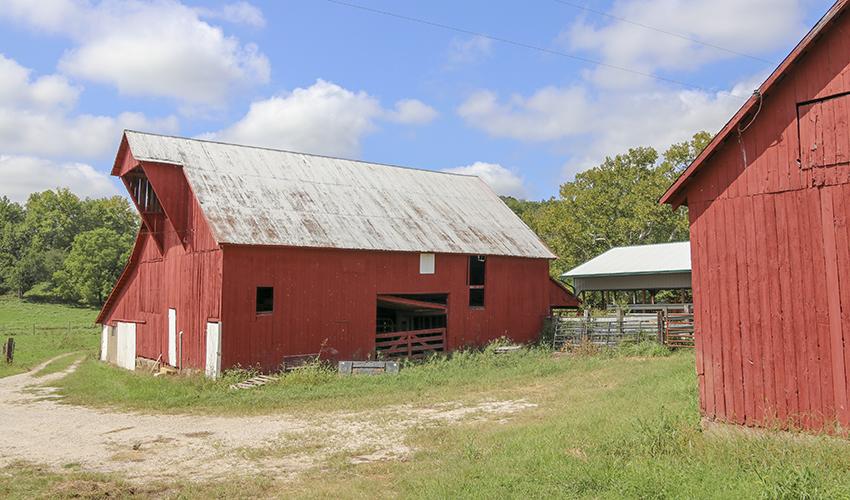 Spring-Creek-Barns.jpg