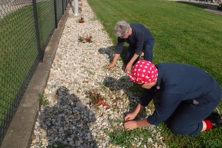 angie and judy work with the roses.JPG