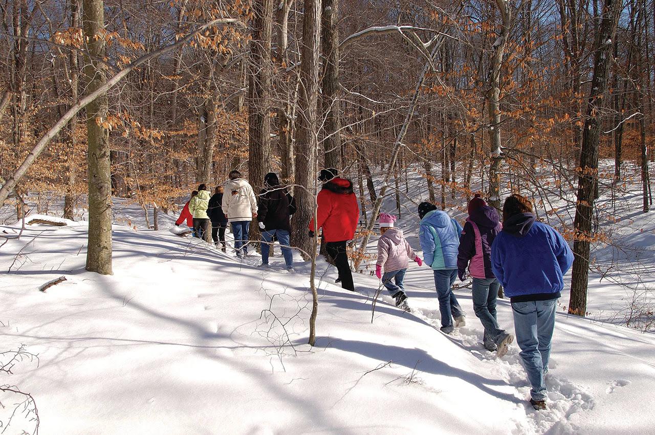 state Park walks.jpg