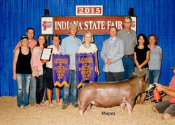 20150819st_state_fair_grand_champion_10.jpg