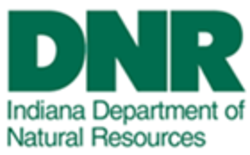 DNR.png