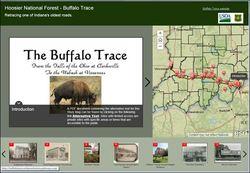 buffalotra.jpg