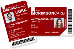 card-composite-v2.png