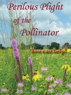 Pollinator-Picture.jpg