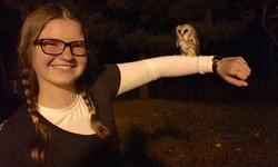 owl1.jpg