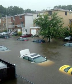 flooded-cars-300x350.jpg